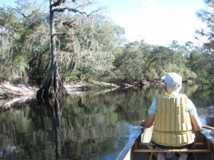 Canoeing_Withlacoochee