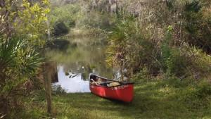 Paddling Hickey's Creek