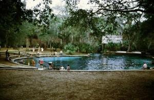 Juniper Springs 1975
